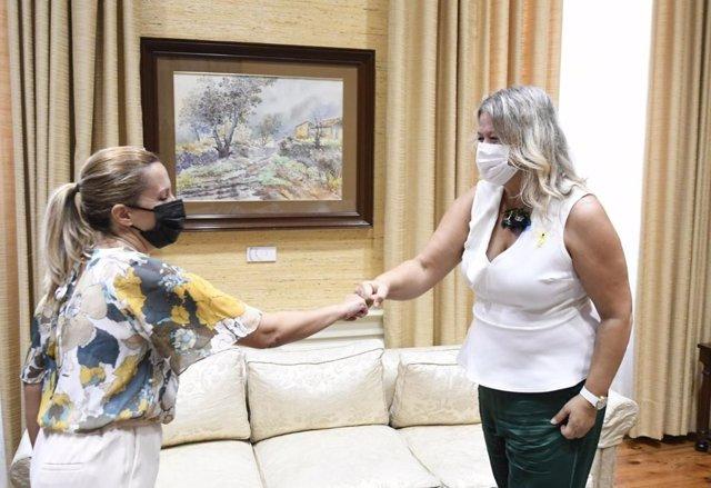 La vicepresidenta segunda del Parlamento de Canarias, Rosa Dávila, y la decana del Colegio de Psicología de Santa Cruz de Tenerife, Carmen Linares, en la entrega de un manifiesto con motivo del 'Día Mundial para la Prevención del Suicidio'