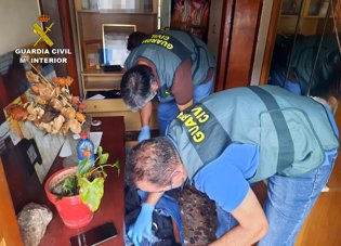 Detenidas dos mujeres relacionadas presuntamente c