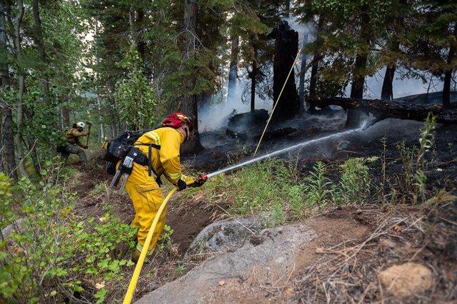 Imagen de archivo de bomberos trabajando en un bosque de California para extinguir los incendios.