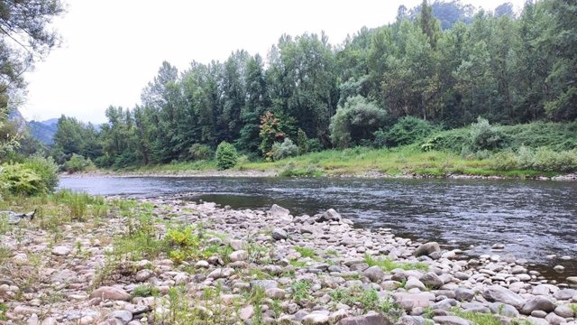 Archivo - Río Nalón, a su paso por Caces