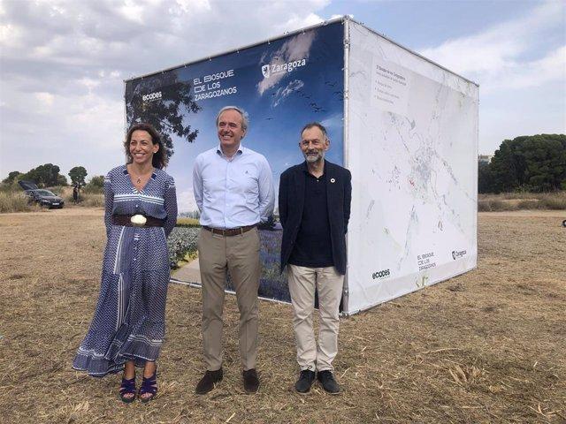 El Bosque de los Zaragozanos comenzará con la plantación de 30 especies diferentes en noviembre, en el suroeste de la ciudad