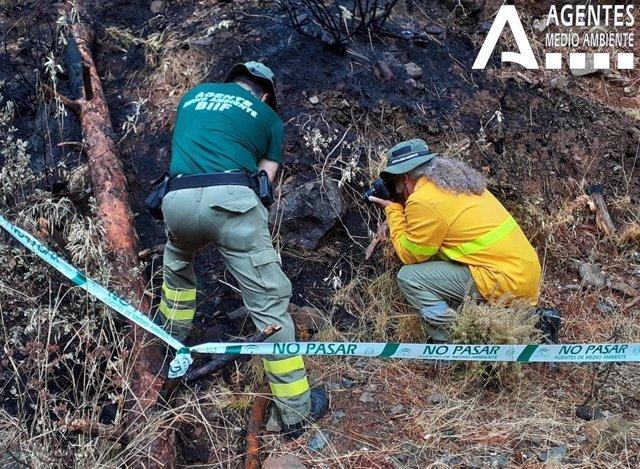 Investigación del incendio de Sierra Bermeja