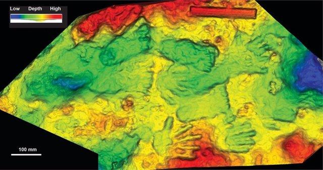 Los investigadores descubrieron lo que posiblemente sea la obra de arte más antigua del mundo, representada aquí en un escaneo tridimensional, en un promontorio rocoso en Quesang en la meseta tibetana en 2018.