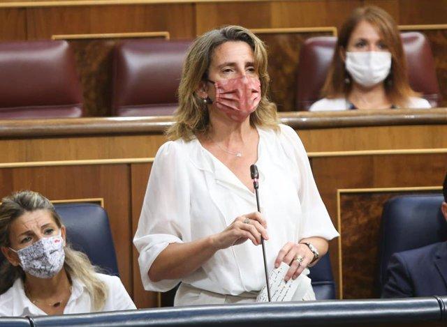 La vicepresidenta para la Transición Ecológica, Teresa Ribera, responde a la oposición en una sesión de control al Gobierno en el Congreso