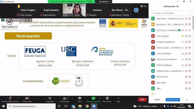 Captura de pantalla durante la celebración del webinar