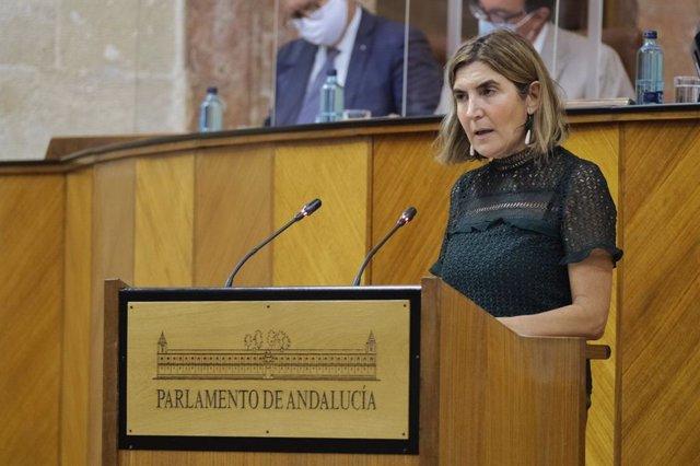 La consejera de Empleo, Rocío Blanco, este miércoles en el Pleno del Parlamento.