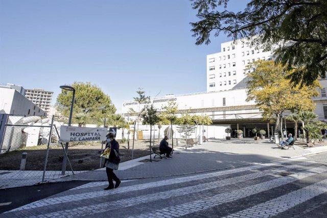 Archivo - Arxiu - Hospital General Universitari d'Alacant,