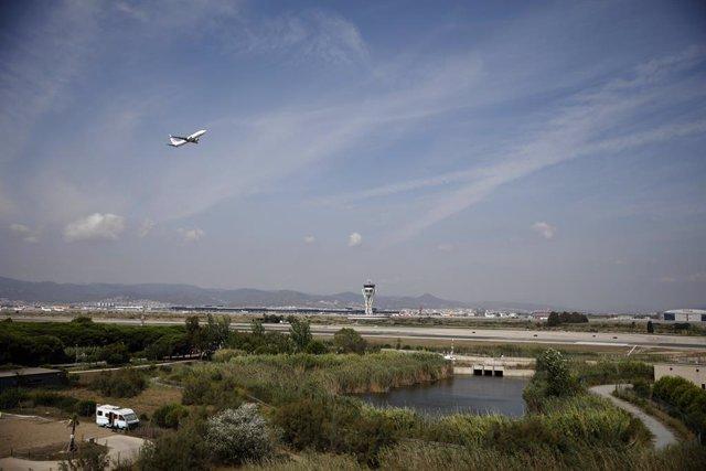 Arxiu - Un avió vola per l'espai protegit de la Ricarda al Prat de Llobregat