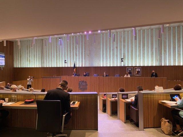 Última sessió del debat d'orientació política del 2021 en el Consell General