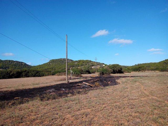 Imagen del terreno afectado por el incendio forestal en Santa Eulàlia (Menorca).