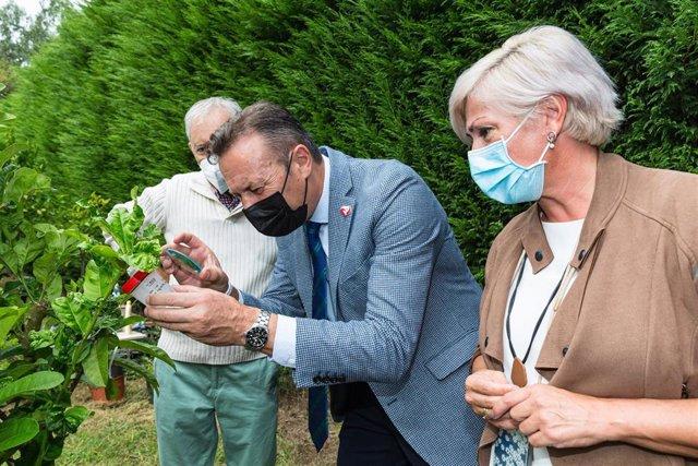 El consejero de Desarrollo Rural, Guillermo Blanco, y la alcaldesa de Polanco, Rosa Díaz, asisten a la suelta experimental de ejemplares de un parasitoide para combatir la psila africana