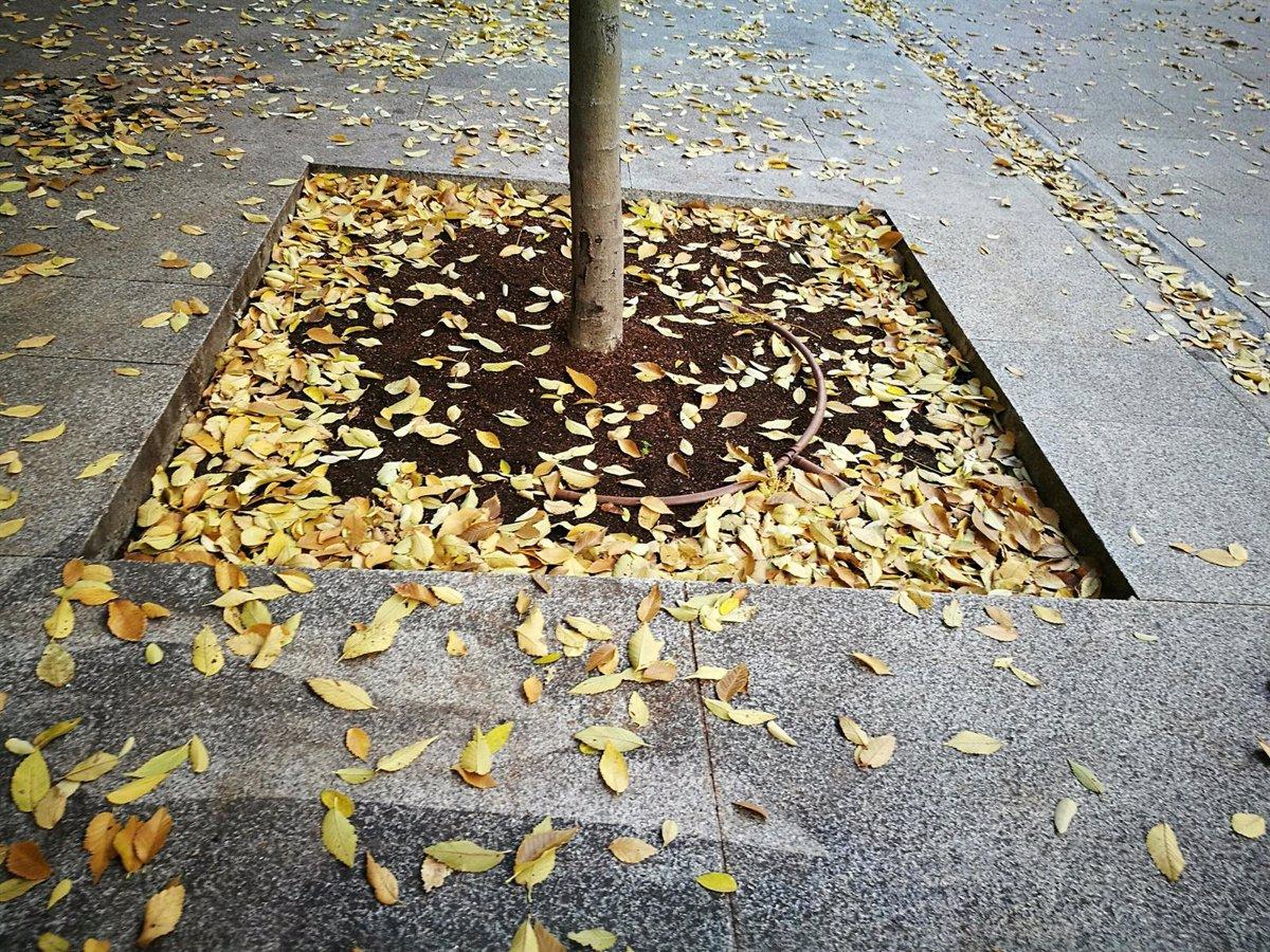 La Aemet prevé un otoño más cálido y seco en Andalucía tras un verano más caluroso de lo normal