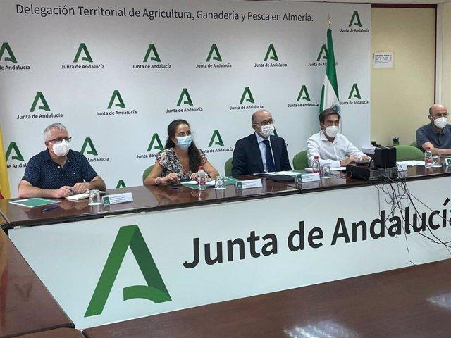 La Junta valora el control biológico en el cultivo de cítricos