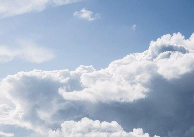 LAS OBSERVACIONES CONFIRMAN QUE LOS AEROSOLES FORMADOS A PARTIR DE COMPUESTOS EMITIDOS POR PLANTAS PUEDEN HACER NUBES MÁS BRILLANTES