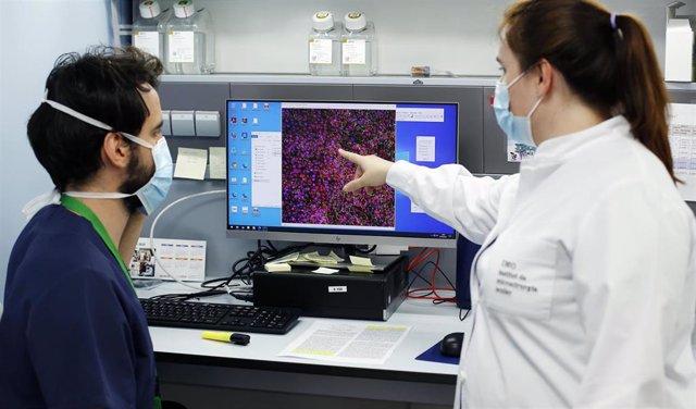Laboratorio de genética