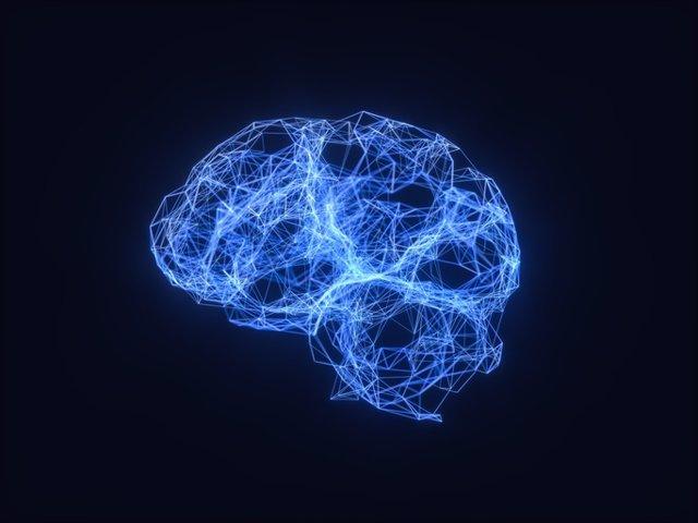 Archivo - Cerebro, plasticidad cerebral.
