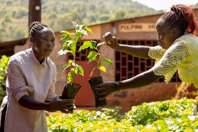 ?Fairtrade Farmers And Workers Across The World Have Shared That Climate Change Is An Immediate Threat To Their Livelihoods, And To Products Loved Around The Globe, Like Coffee, Cocoa And Bananas. In An Open Letter To World Leaders, 1.8 Million Fairtrade