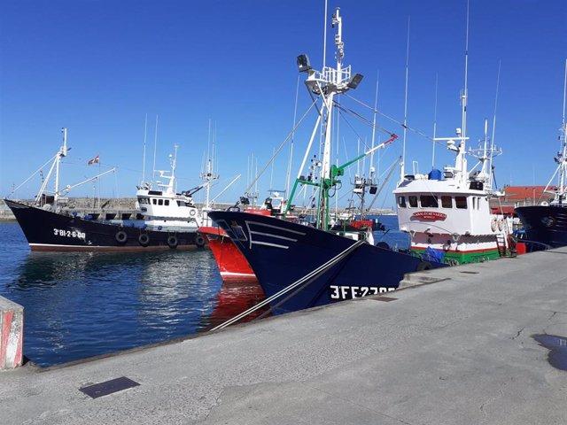 Barcos pesqueros en el puerto de Bermeo (Bizkaia)