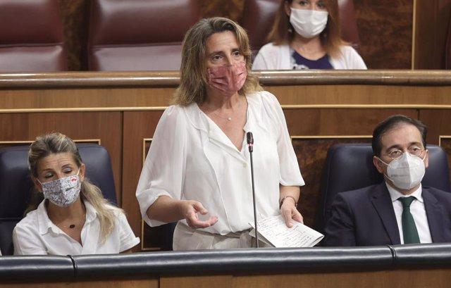 La vicepresidenta tercera y ministra de Transición Ecológica y Reto Demográfico, Teresa Ribera, interviene en una sesión de control al Gobierno en el Congreso