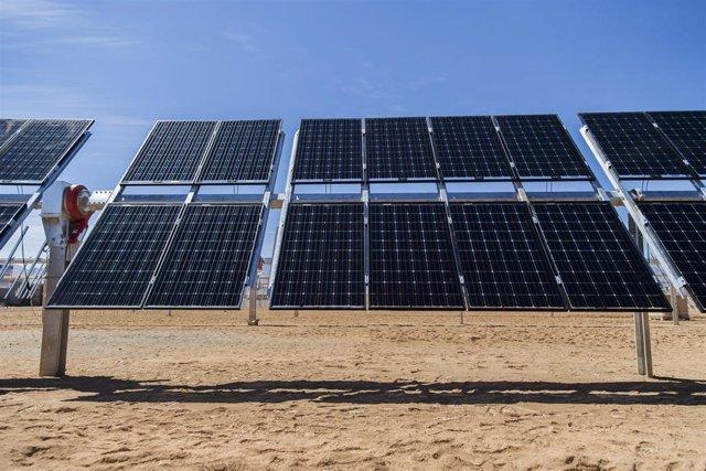 Archivo - Seguidores solares bifaciales de Soltec