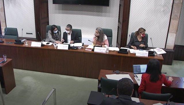 Reunió de la Comissió d'Afers Institucionals